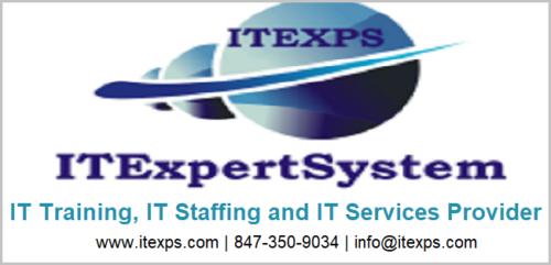 IT Expert System